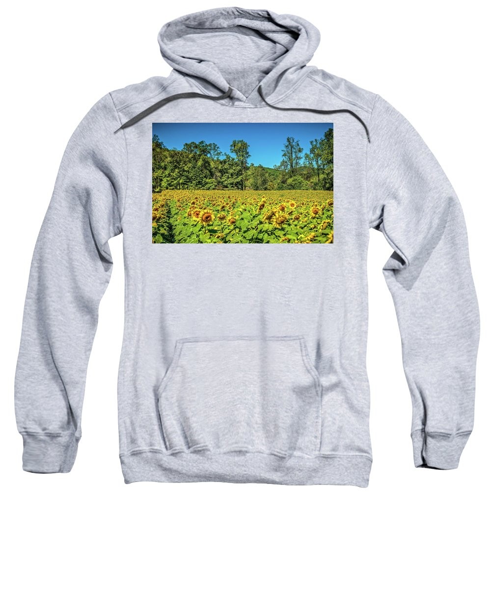 Sunflowers Sweatshirt featuring the photograph A Sunflower Day by Sandra Burm