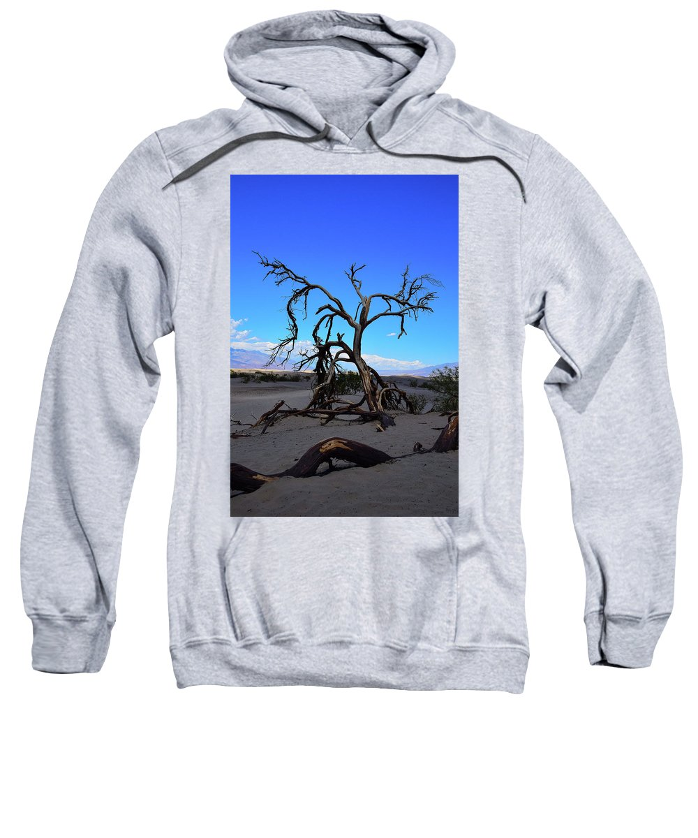 Nature Sweatshirt featuring the photograph A Tree In An Arid Land by DoMaxPh