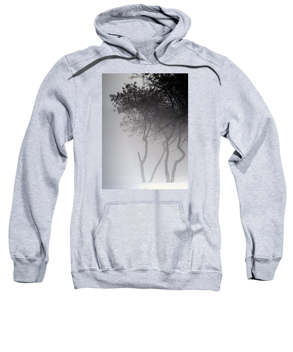 Trees Sweatshirt featuring the photograph A Walk Through The Mist by Linda Shafer