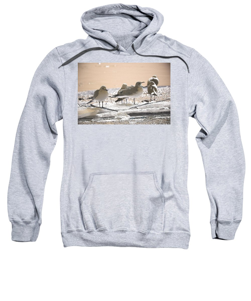 Coastal Sweatshirt featuring the photograph A Winter's Day Passing Bye by Karol Livote