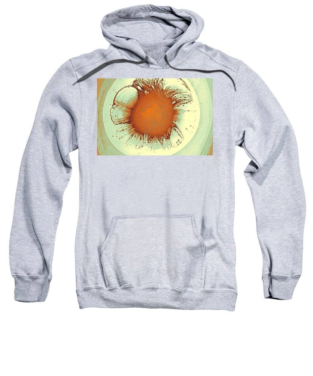 Abstract Sweatshirt featuring the painting Abstract Art Combination - The Iris, Ca 2017, Byy Adam Asar by Adam Asar
