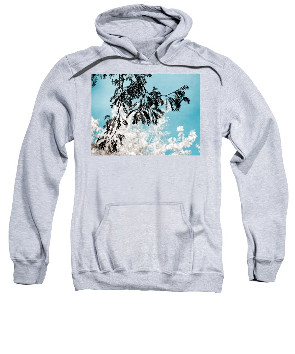 Tree Sweatshirt featuring the photograph Abstract Locust by Marilyn Hunt