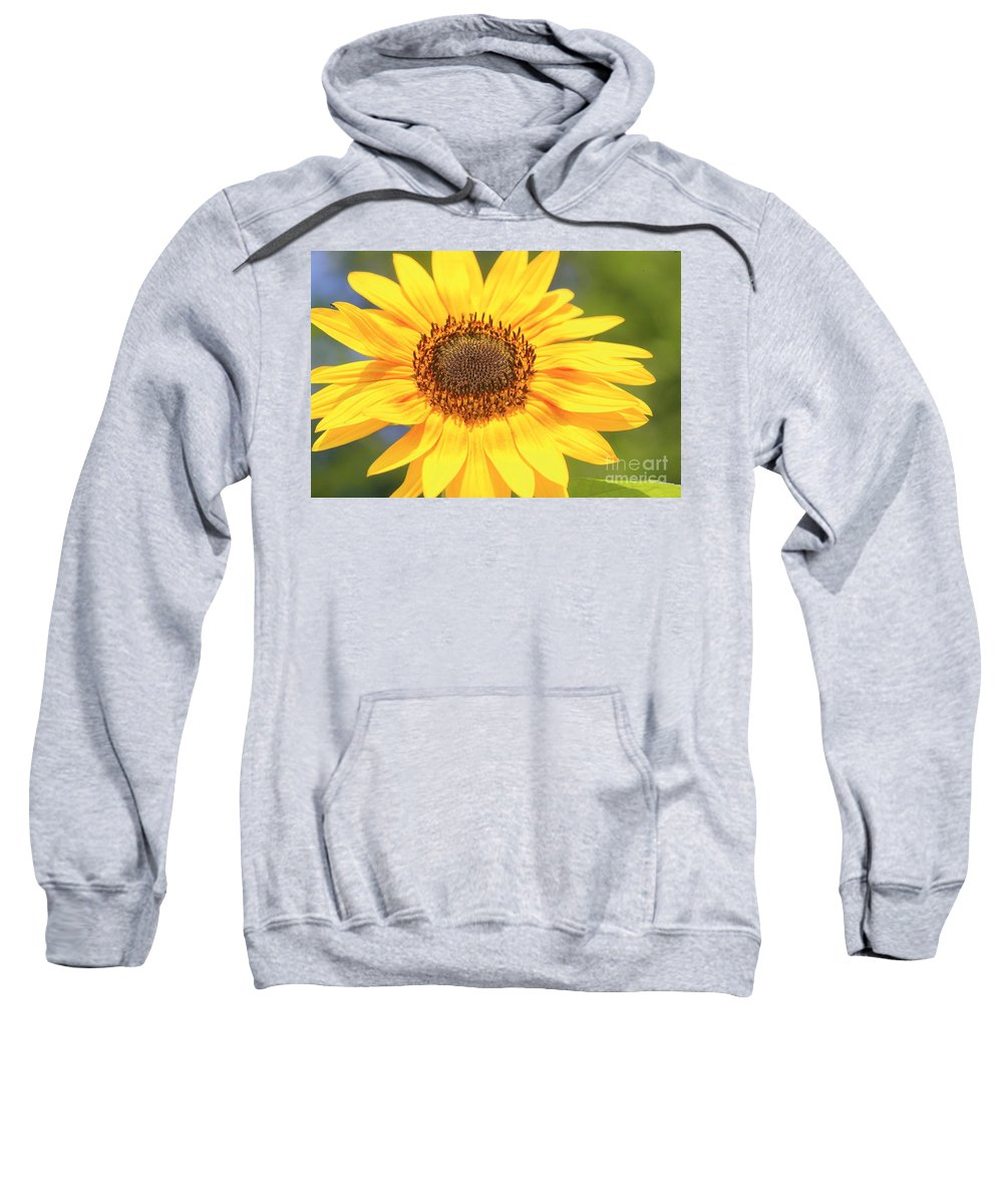Flower Sweatshirt featuring the photograph Aburst Of Yellow by Robert Pearson