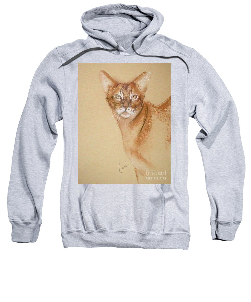 Pastel Sweatshirt featuring the drawing Abyssinian by Cori Solomon