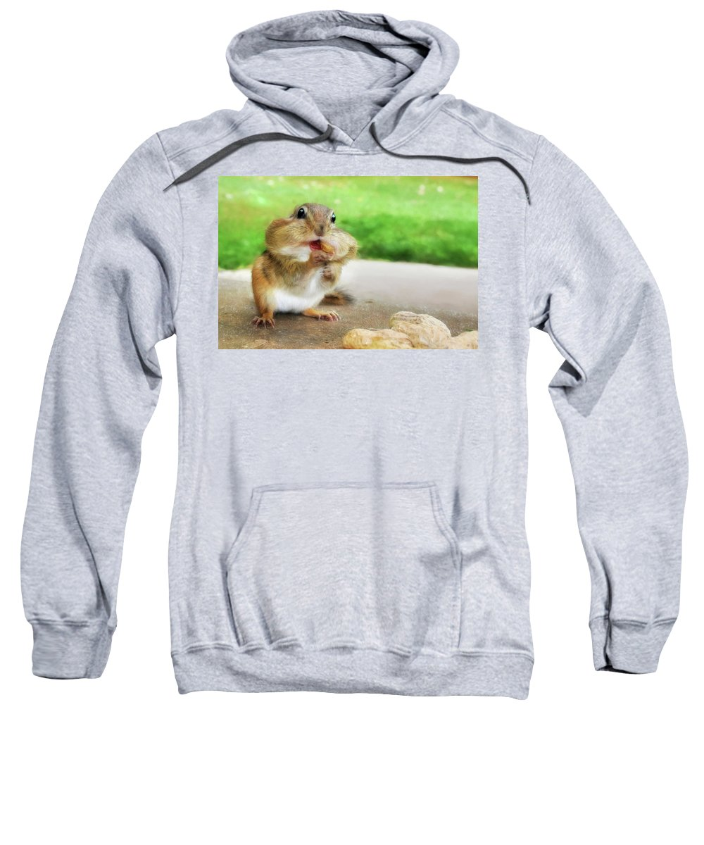 Chippy Sweatshirt featuring the photograph Addicted To Nuts by Lori Deiter