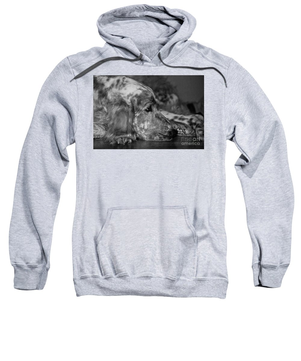Dog Sweatshirt featuring the photograph Addelaide by Andrea Spritzer