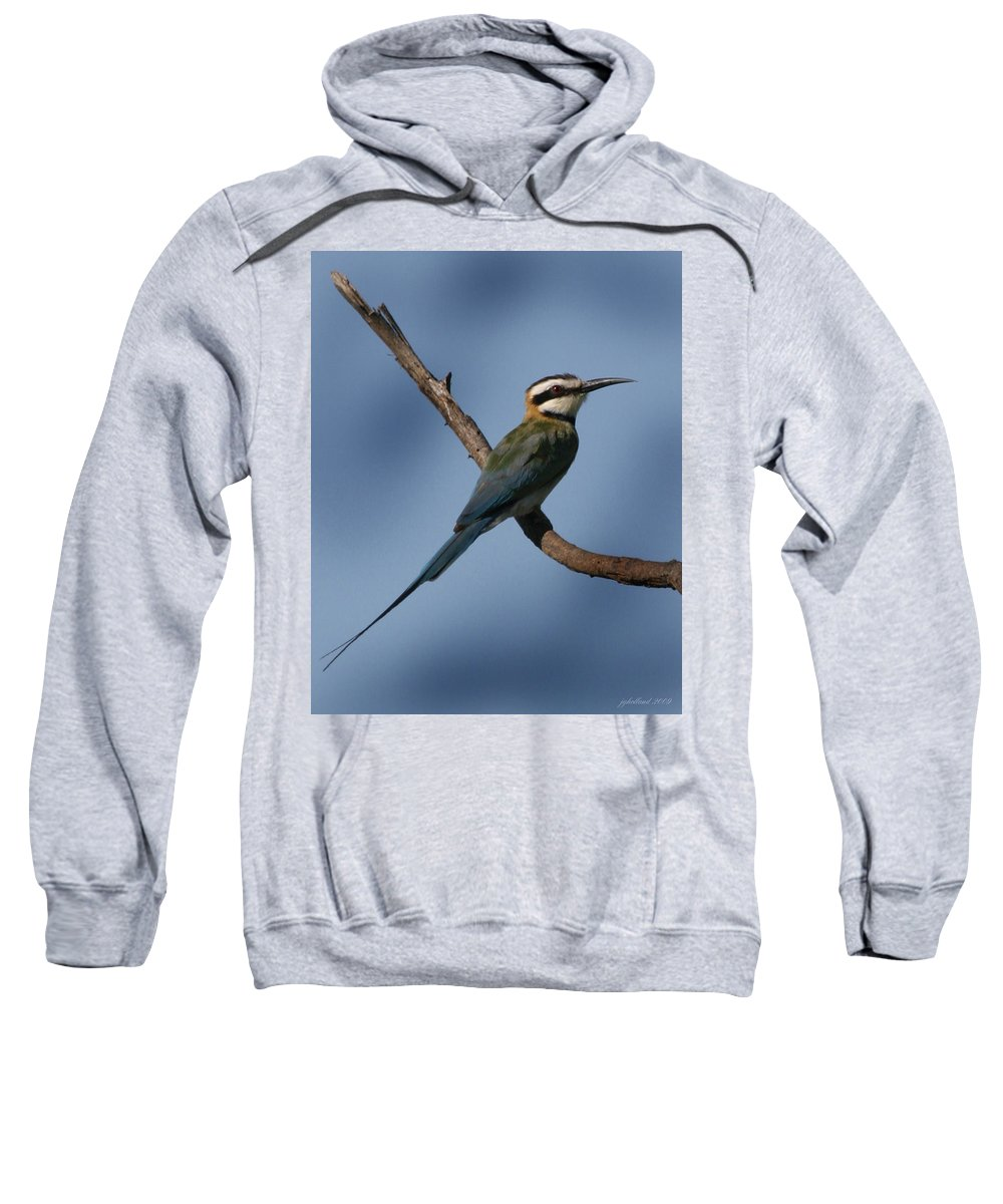 Bee Eater Sweatshirt featuring the photograph African Bee Eater by Joseph G Holland