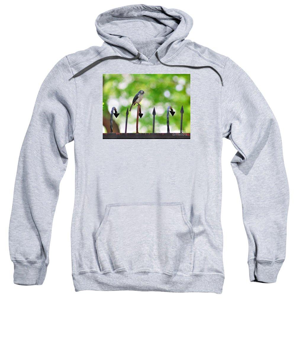 Africa Sweatshirt featuring the photograph African White-eye Bird by Morris Keyonzo