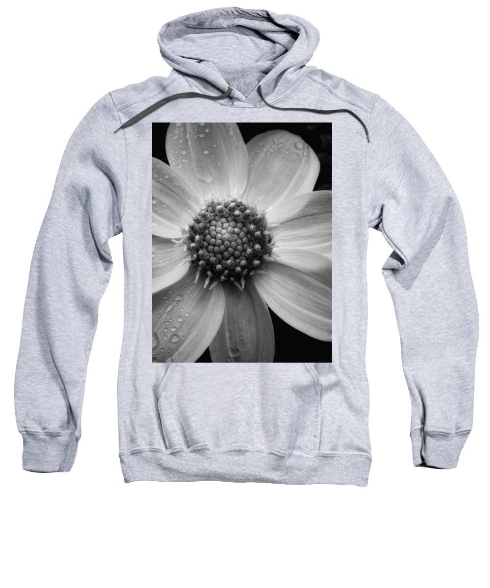 Floral Sweatshirt featuring the photograph After The Rain by Donna Blackhall