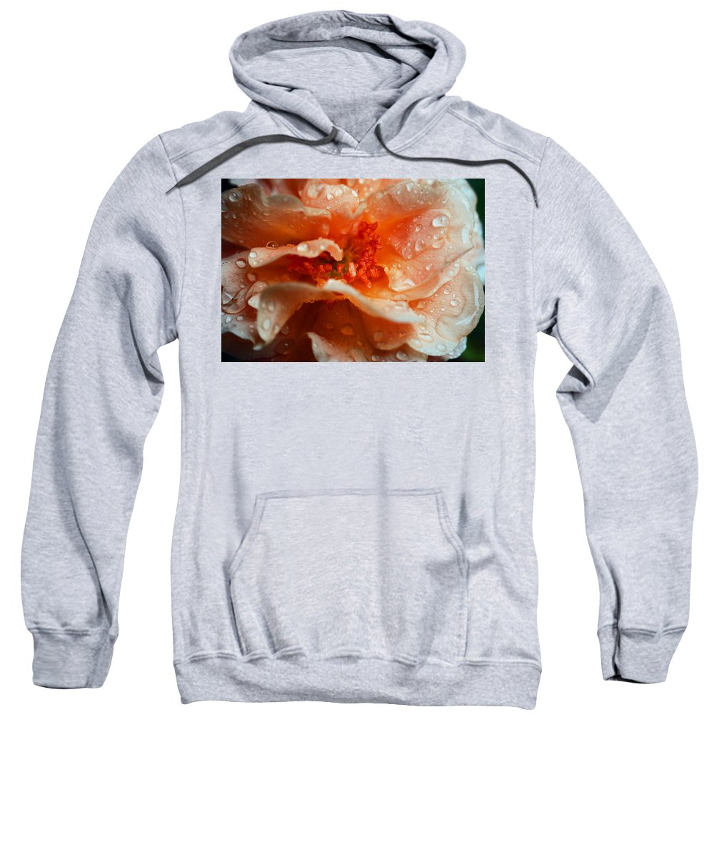 Rose Sweatshirt featuring the photograph After The Rain by Lori Tambakis