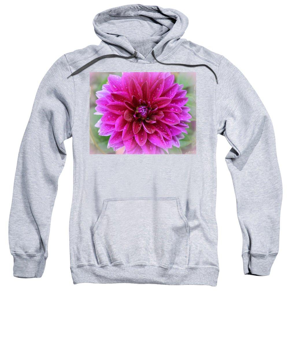 Makro Sweatshirt featuring the photograph After The Rain - Purple Dahlia by Dora Sofia Caputo Photographic Design and Fine Art