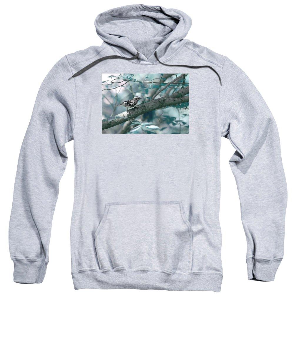 Nature Sweatshirt featuring the photograph Against The World by Jennifer Kozlansky