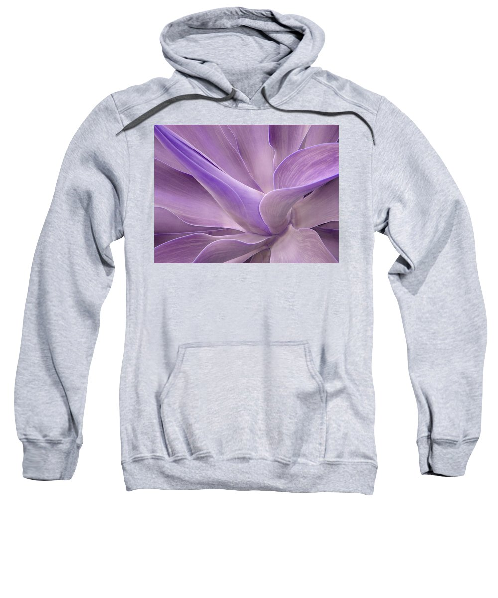 Agave Sweatshirt featuring the photograph Agave Attenuata Abstract 2 by Bel Menpes