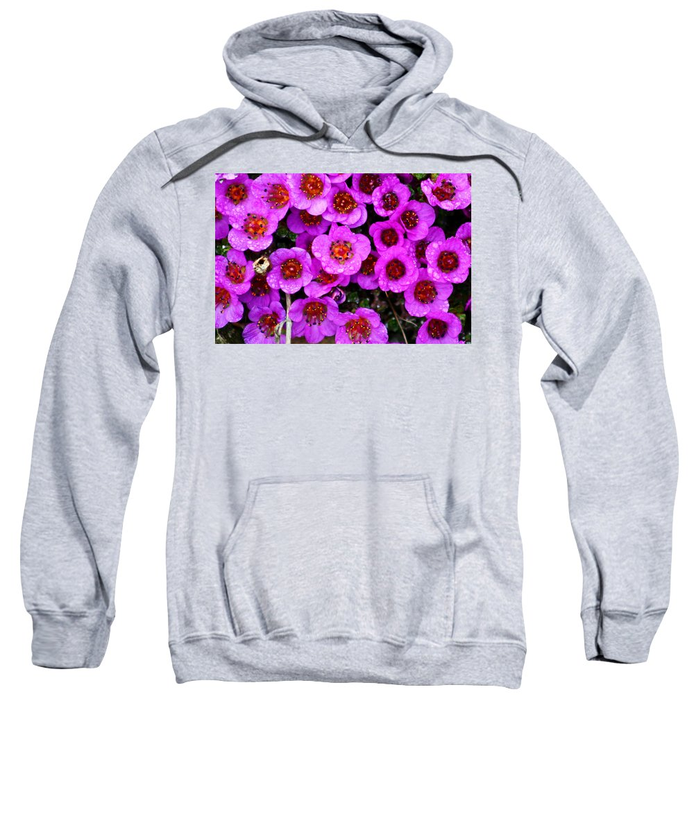 Flowers. Wild Flowers Sweatshirt featuring the photograph Alaskan Wild Flowers by Anthony Jones