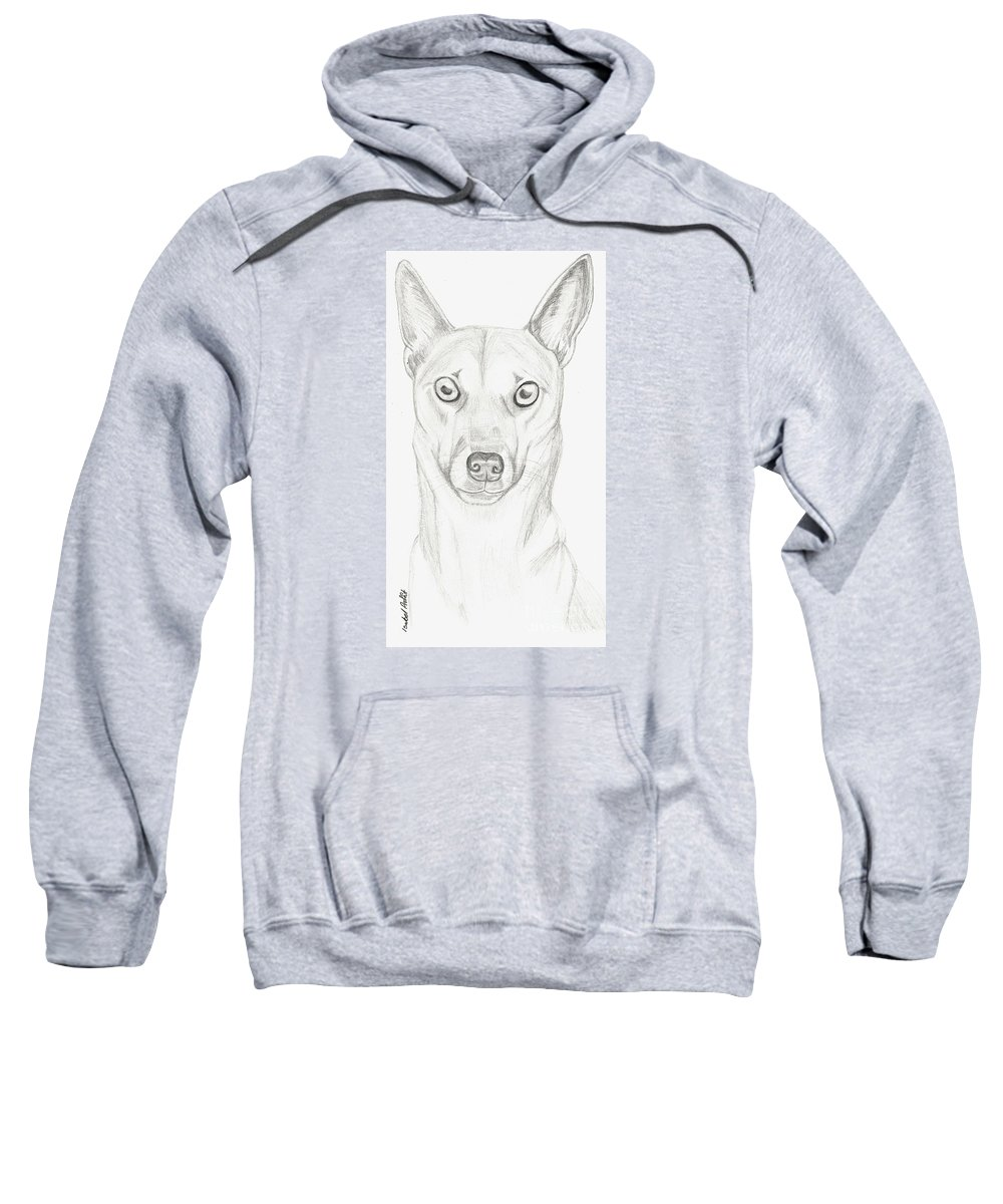 Dog Sweatshirt featuring the drawing Alfie by Isabel Proffit