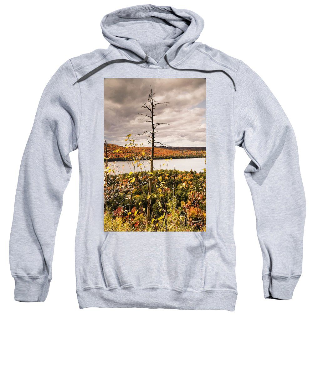 Autumn Sweatshirt featuring the photograph Algonquin Autumn by Phill Doherty