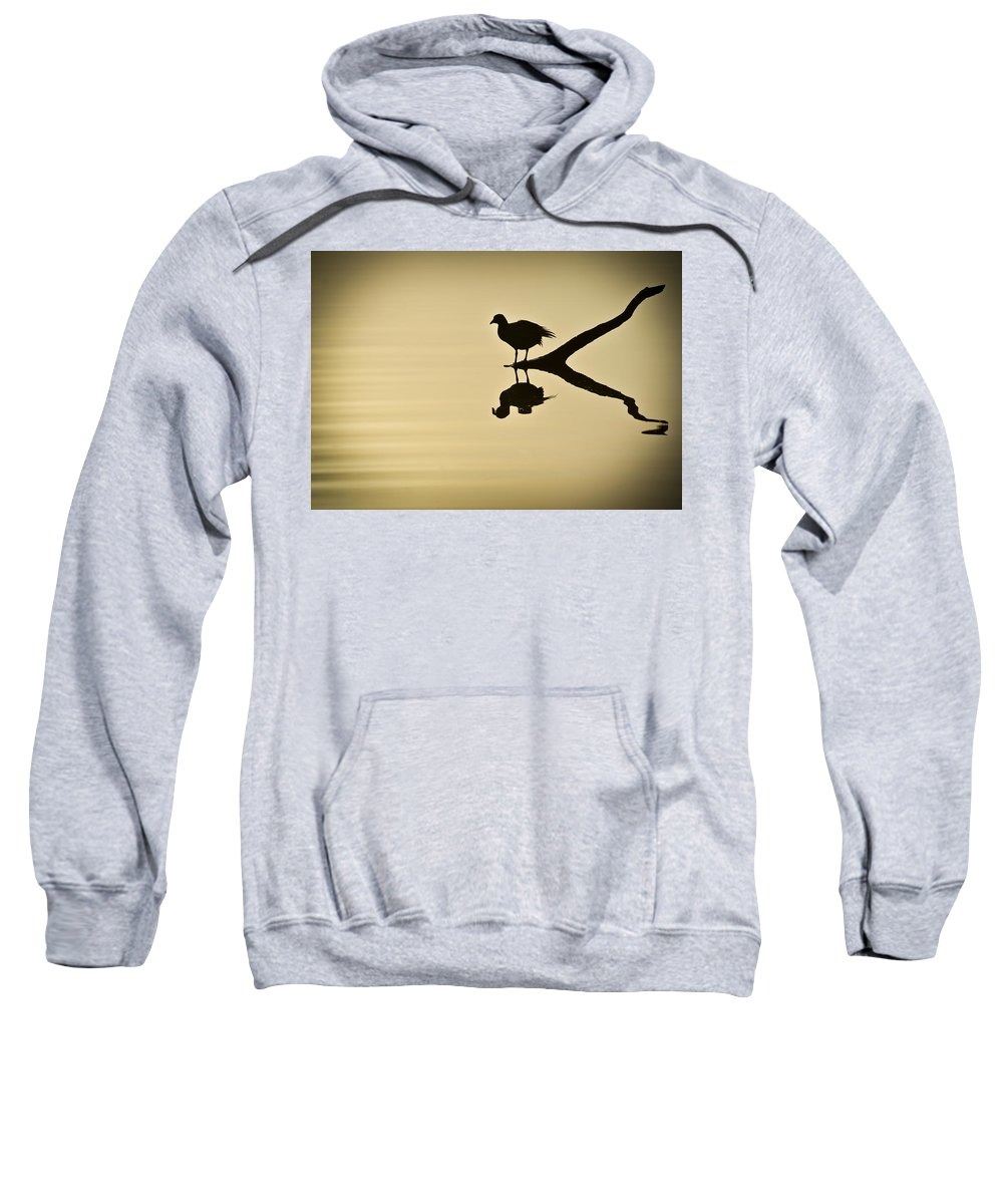 Bird Silhouette Sweatshirt featuring the photograph All By Myself by Carolyn Marshall