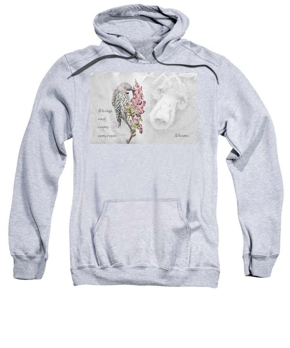 Northern Flicker Photographs Hooded Sweatshirts T-Shirts