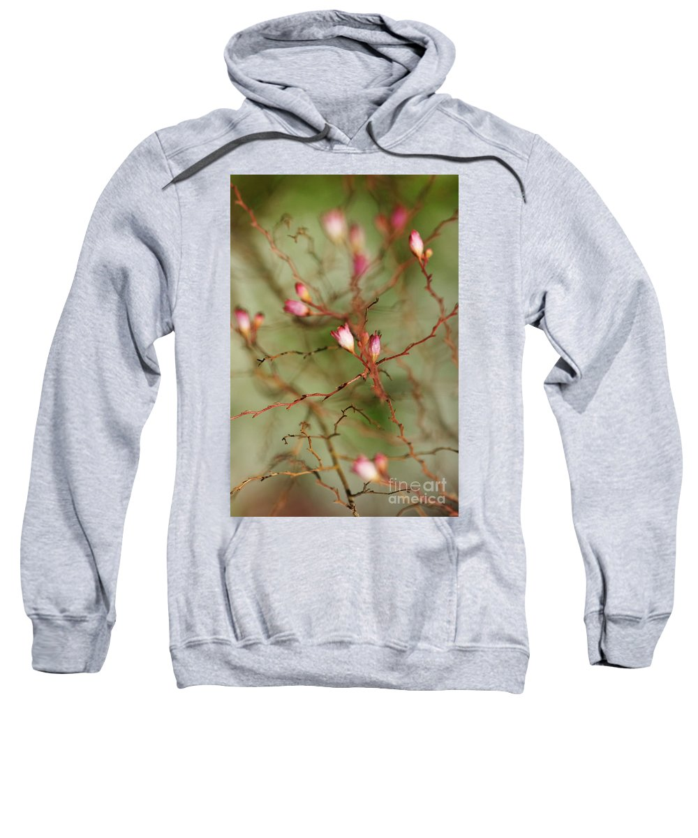 Flower Sweatshirt featuring the photograph All Things Connected by Linda Shafer