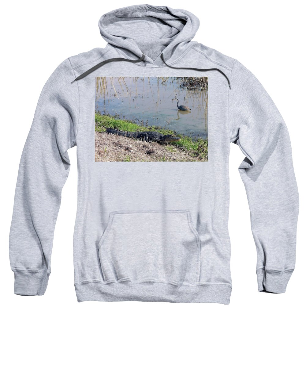 Nature Sweatshirt featuring the photograph Alligator And Heron by Al Powell Photography USA