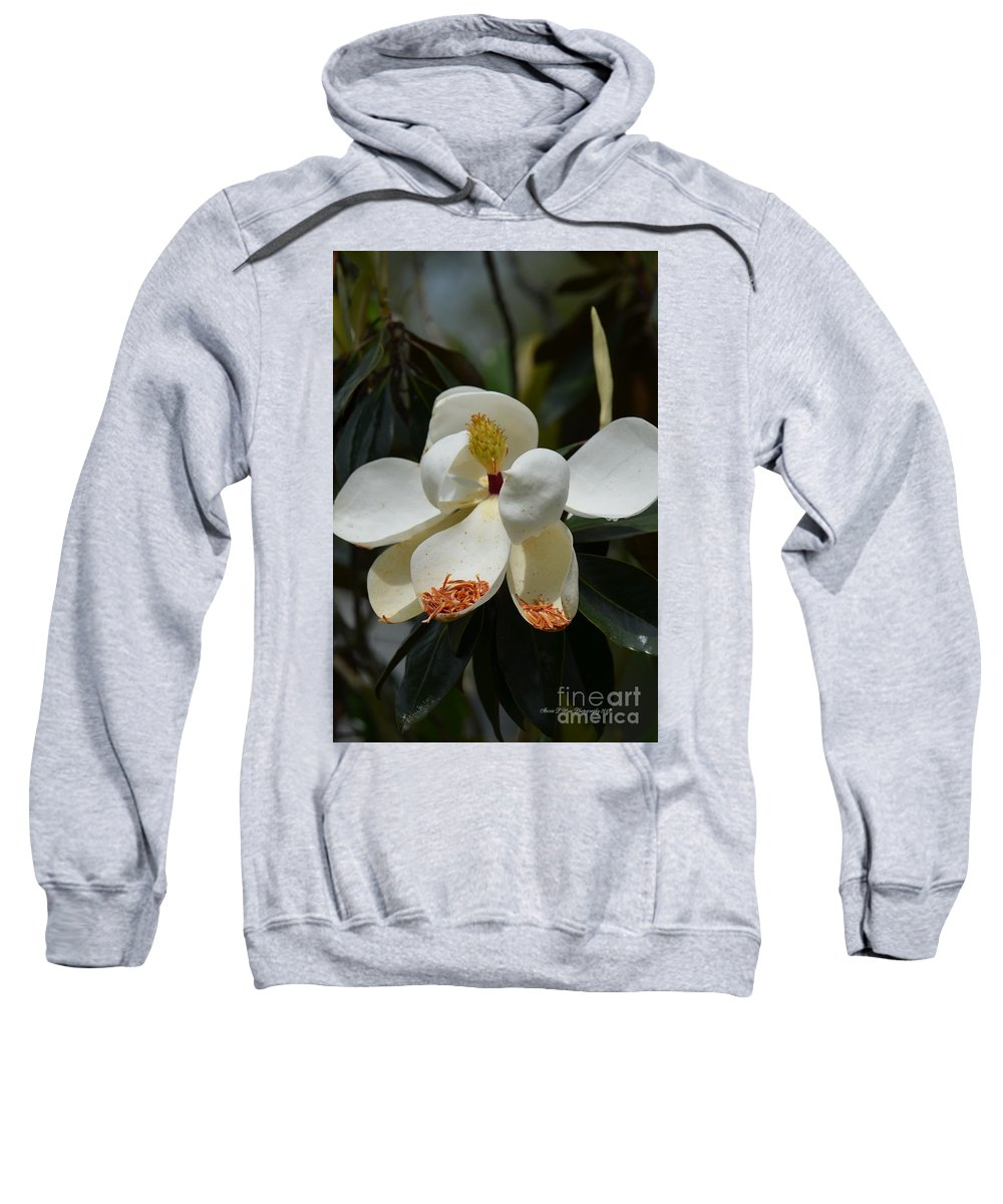 Alluring Moment Sweatshirt featuring the photograph Alluring Moment by Maria Urso
