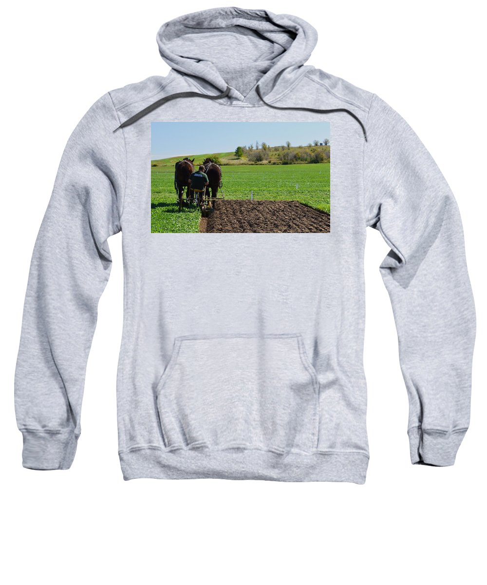 Horses Sweatshirt featuring the photograph Along The Row Three by Lyle Crump