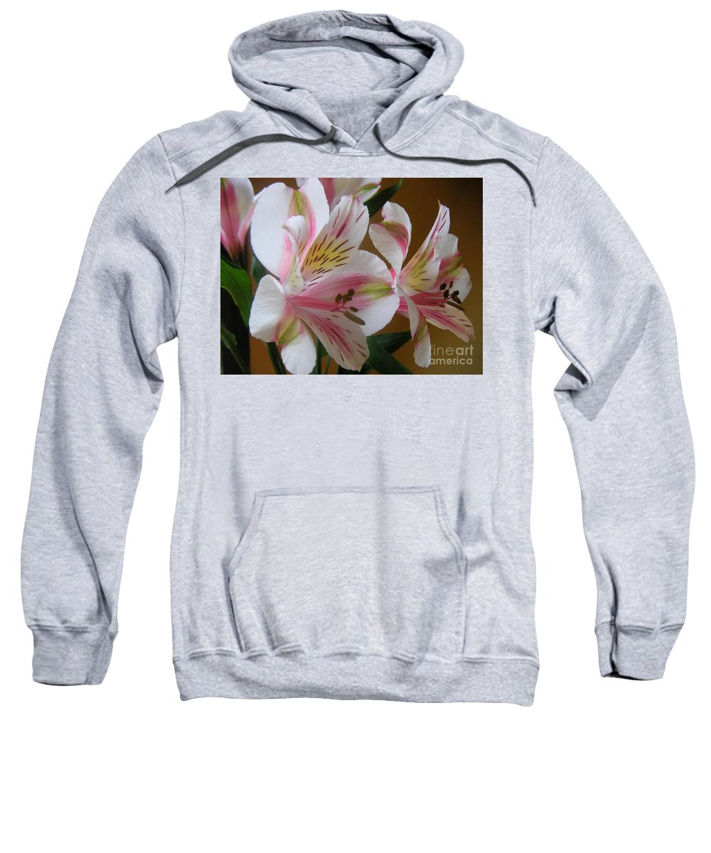 Nature Sweatshirt featuring the photograph Alstroemerias - Listening by Lucyna A M Green