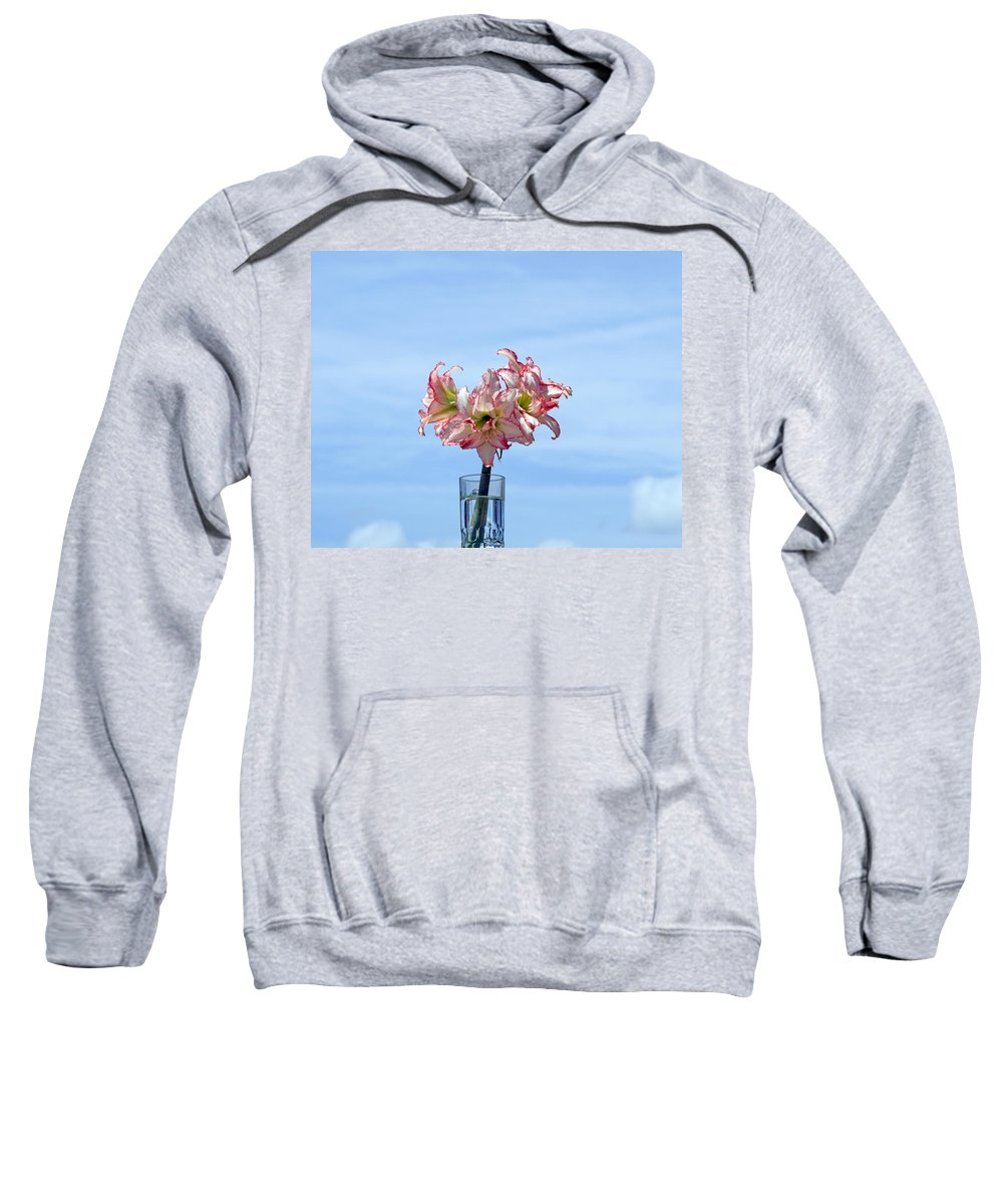 Amaryllis; Belladonna; Lily; Naked; Ladies; Lady; Florida; Spring; Sky; Bloom; Blooming. Flower; Blo Sweatshirt featuring the photograph Amaryillis Belladonna Against The Spring Florida Sky by Allan Hughes