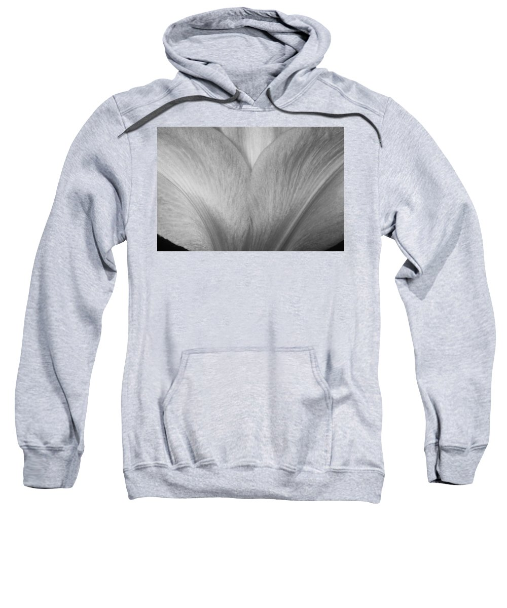 Amaryllis Sweatshirt featuring the photograph Amaryllis Flower Petals In Black And White by James BO Insogna