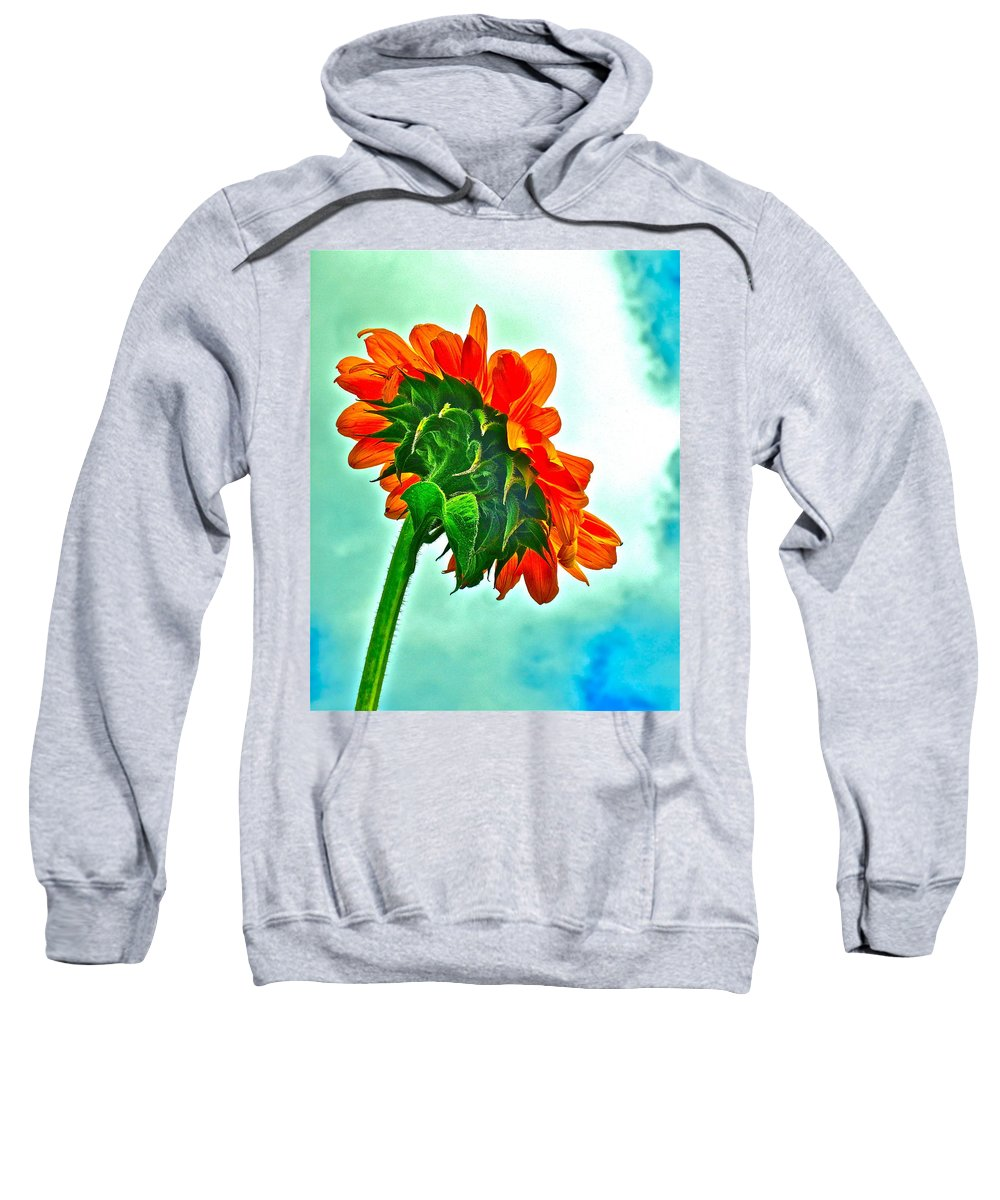 Nature Sweatshirt featuring the photograph Amen by Gwyn Newcombe