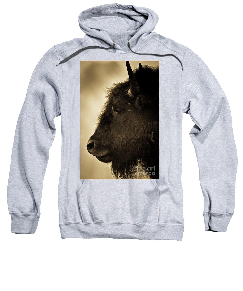 America Sweatshirt featuring the photograph American Bison by Jeff Diener