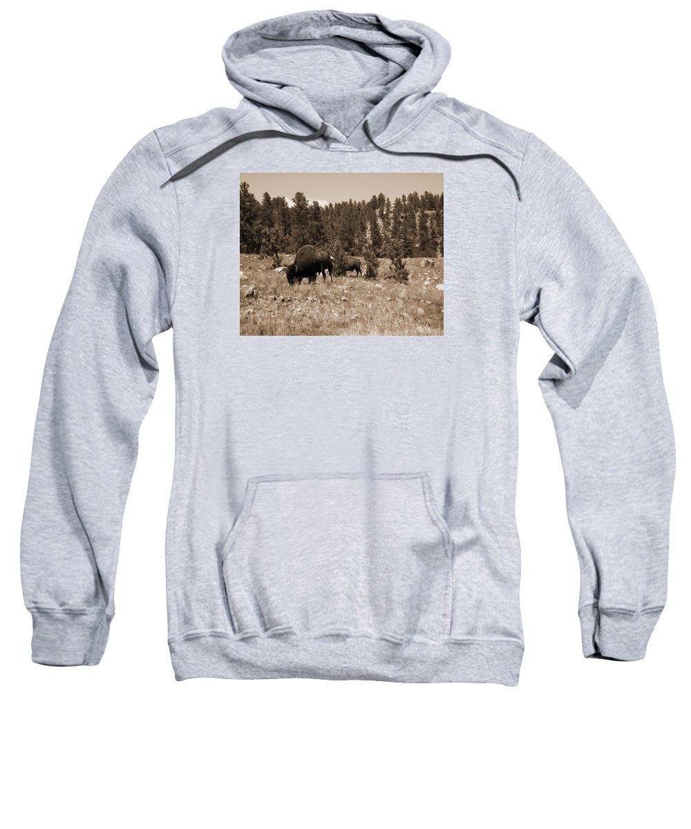 Bison Sweatshirt featuring the photograph American Bison Vintage by Pamela Peters