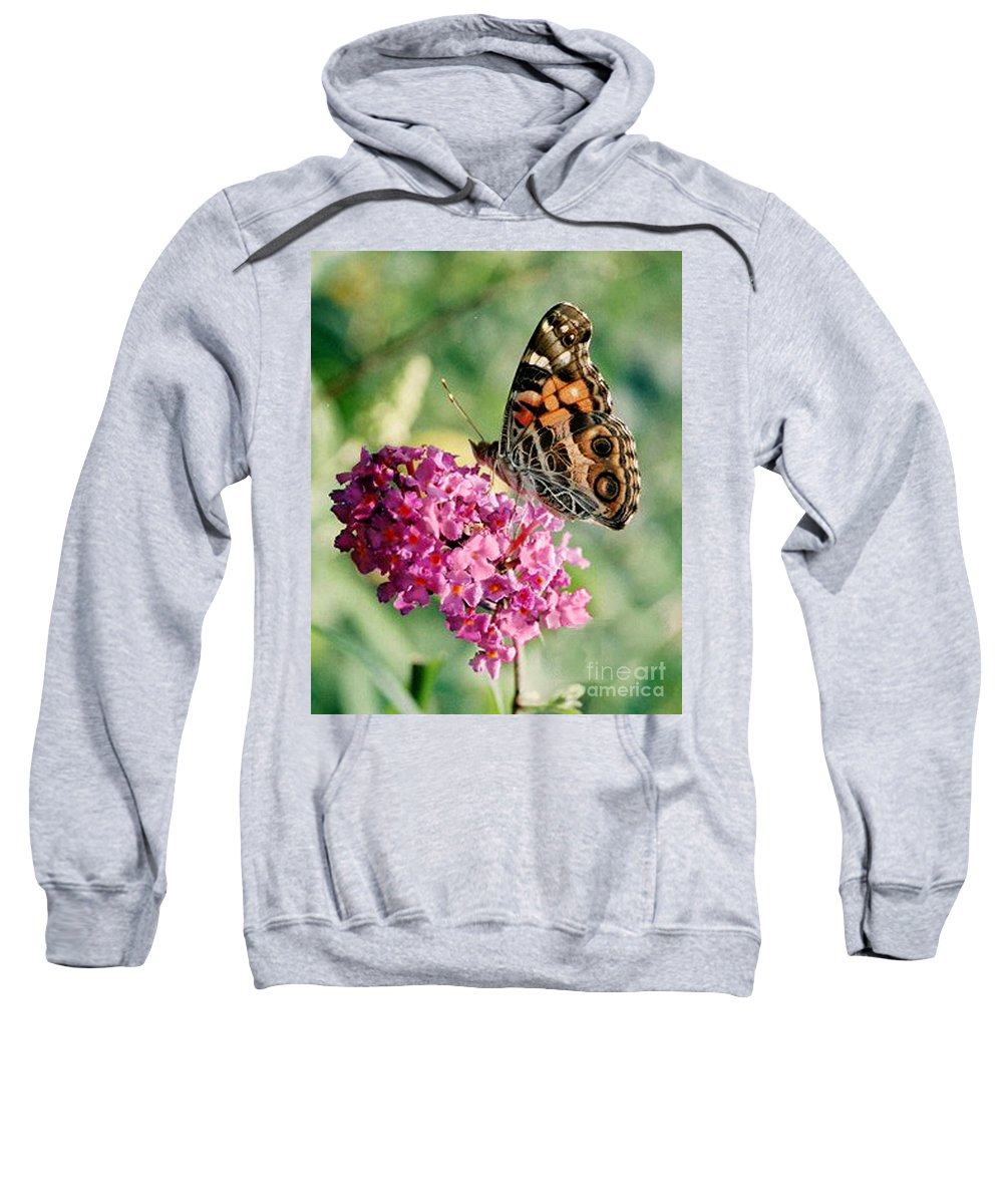 Butterfly Sweatshirt featuring the photograph American Painted Lady by Donna Brown