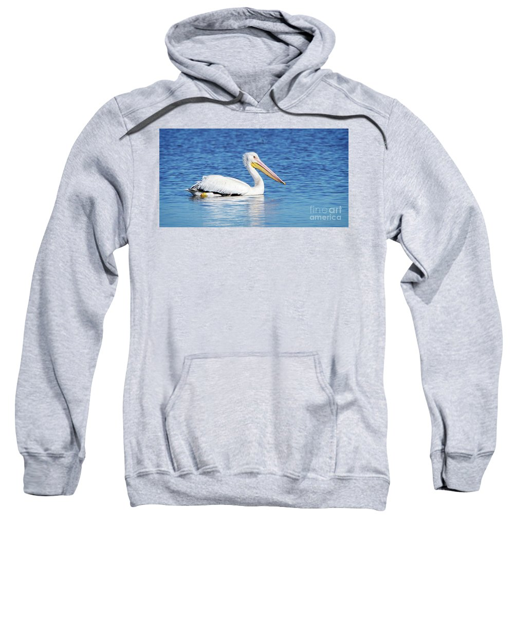 American Sweatshirt featuring the photograph American White Pelican by Charles Dobbs