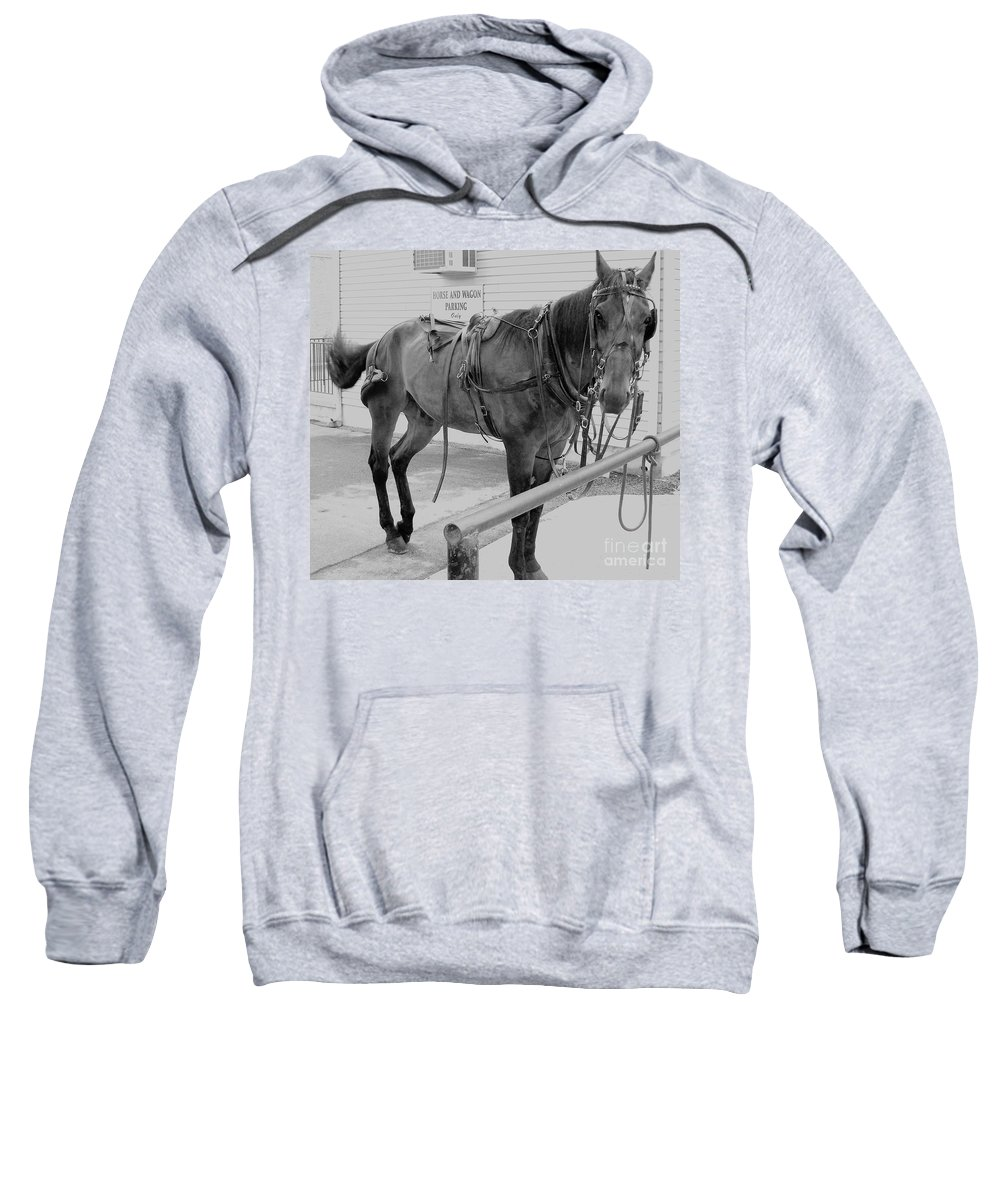 Amish Horse Sweatshirt featuring the painting Amish Horse by Eric Schiabor