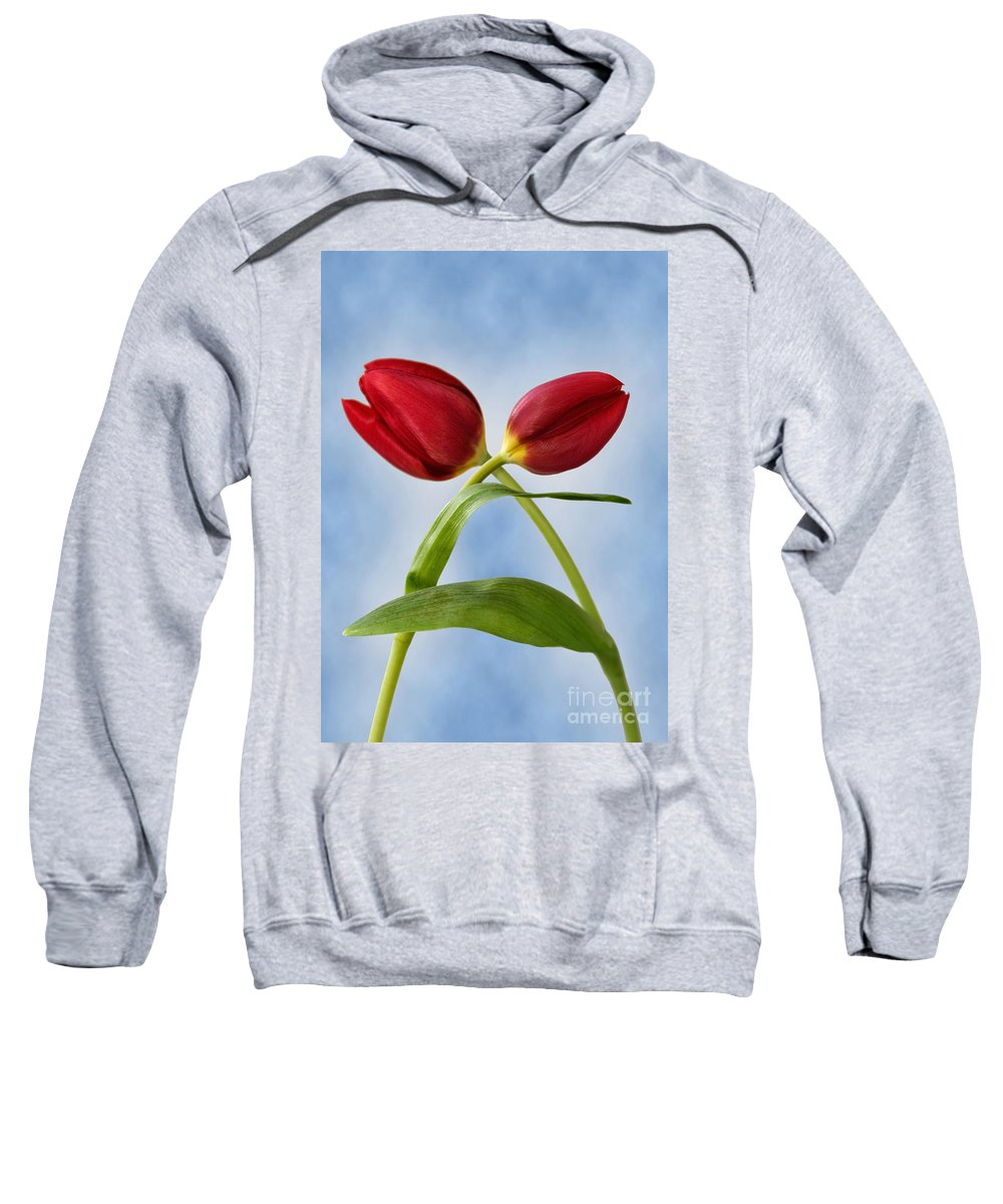 Tulip Sweatshirt featuring the photograph An Embrace Of Tulips by John Edwards