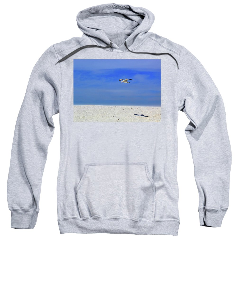 Seagull Sweatshirt featuring the photograph Ancient Mariner by Marie Hicks