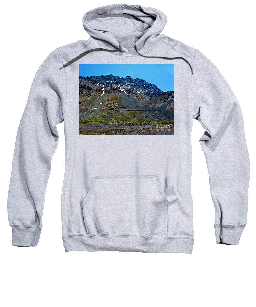 Andes Sweatshirt featuring the photograph Andean Journey by Roberta Bragan