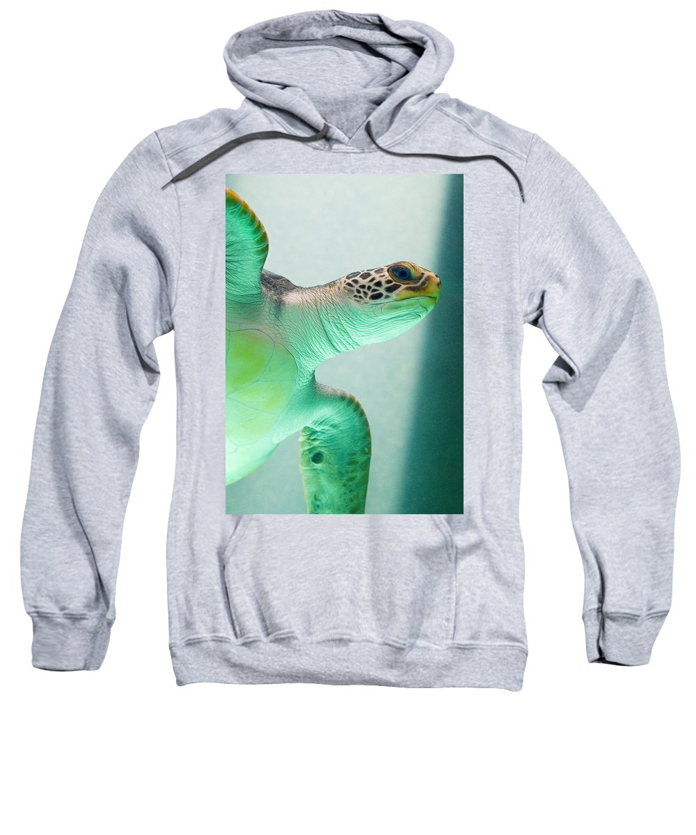 Skip Hunt Sweatshirt featuring the photograph Angel 2 by Skip Hunt