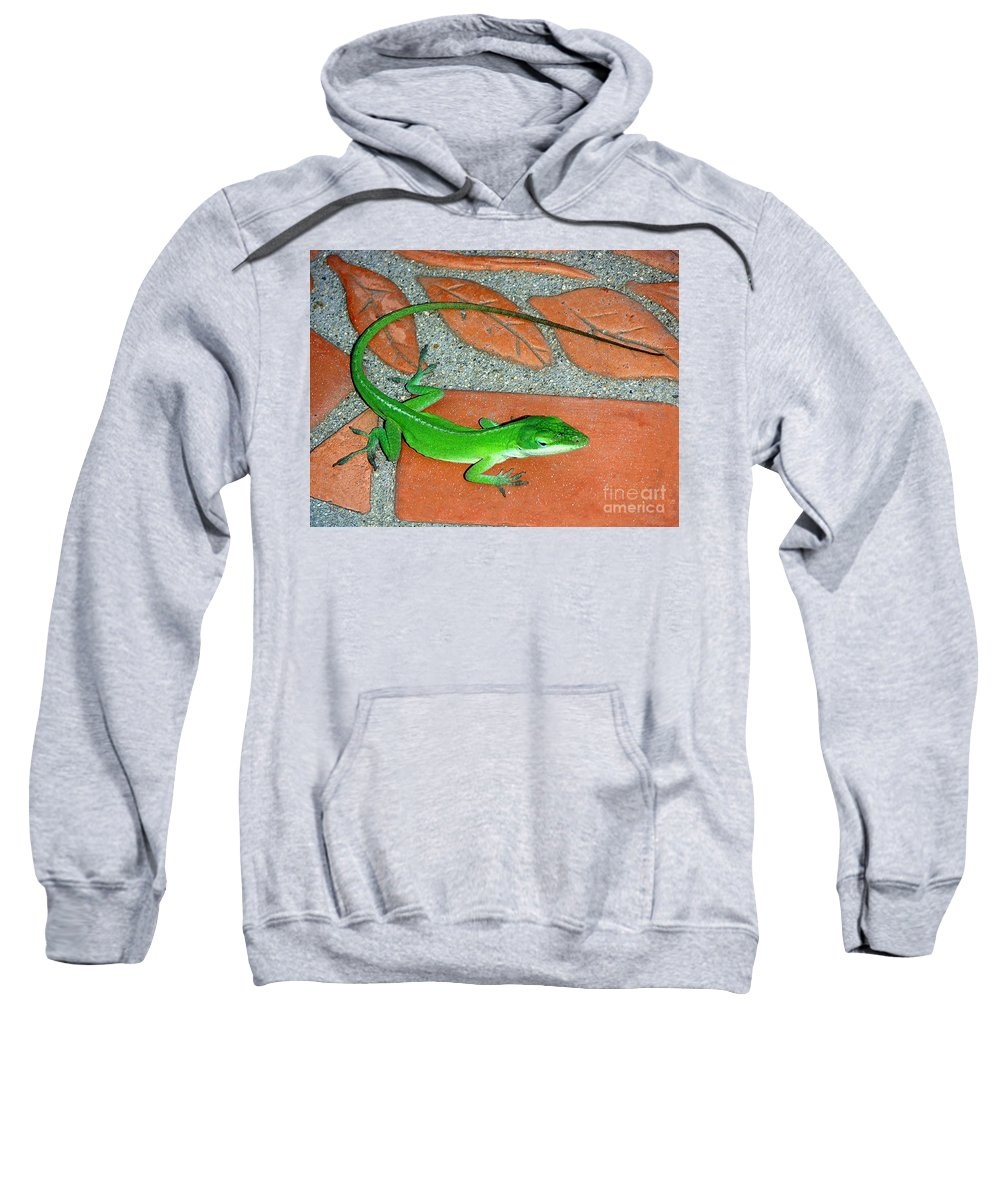 Nature Sweatshirt featuring the photograph Anole On Chair Tiles by Lucyna A M Green