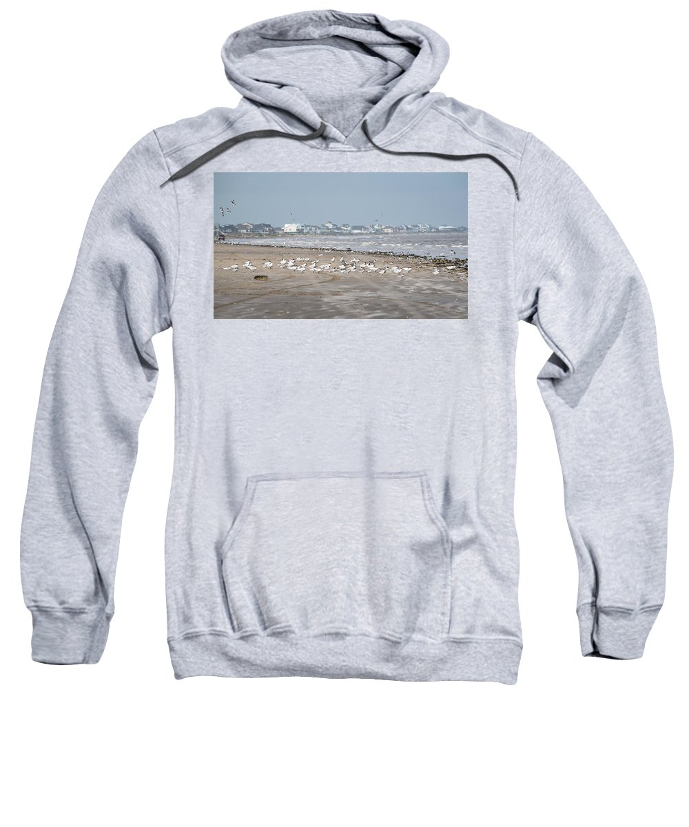 Bolivar Flats Sweatshirt featuring the photograph Another Day At The Beach by Barb Thompson