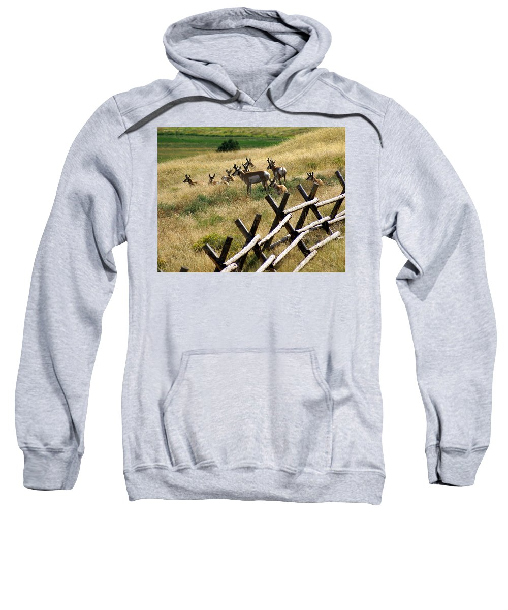 Wildlife Sweatshirt featuring the photograph Antelope 2 by Marty Koch