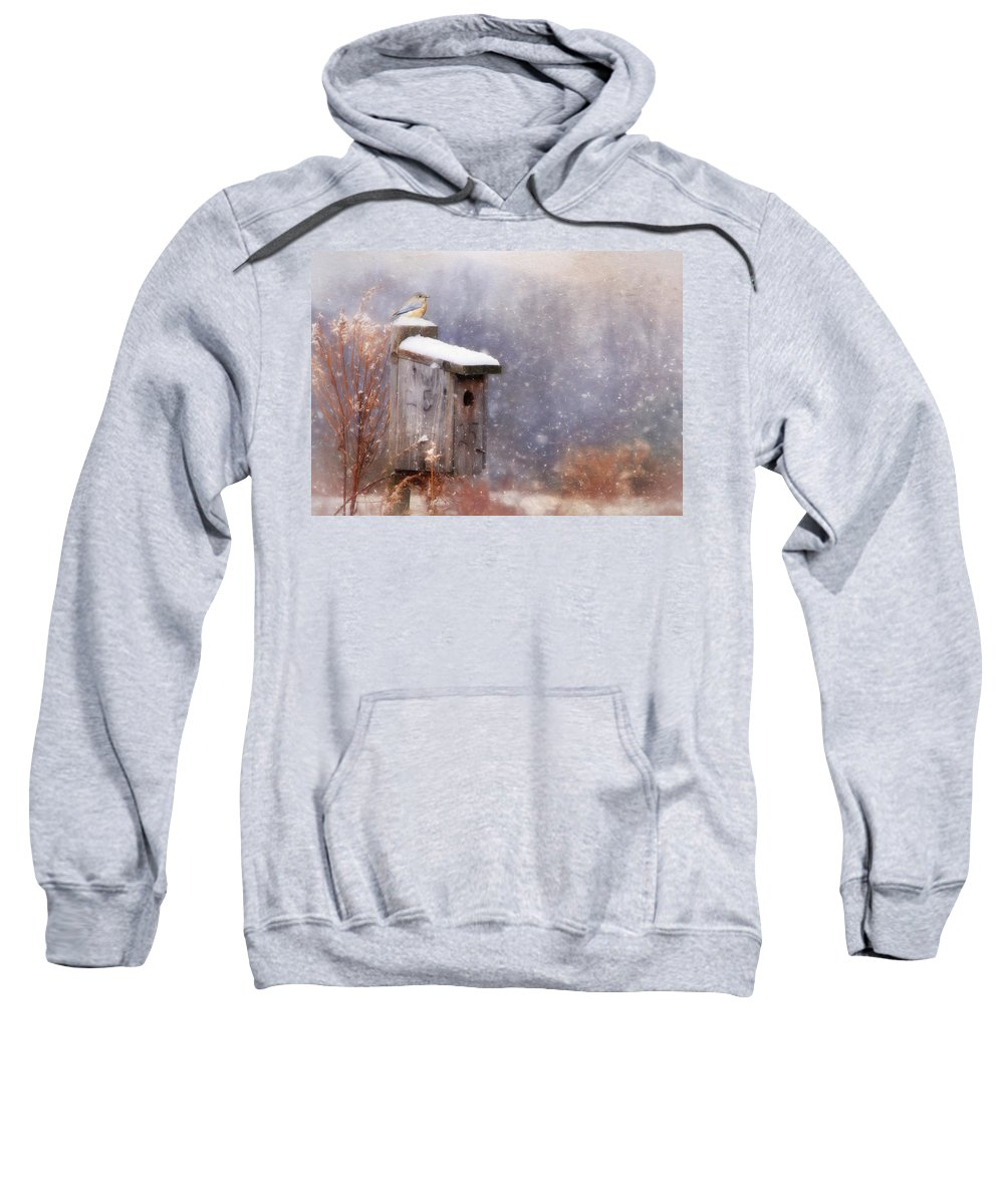 Bird Sweatshirt featuring the photograph Apartment 25 by Lori Deiter