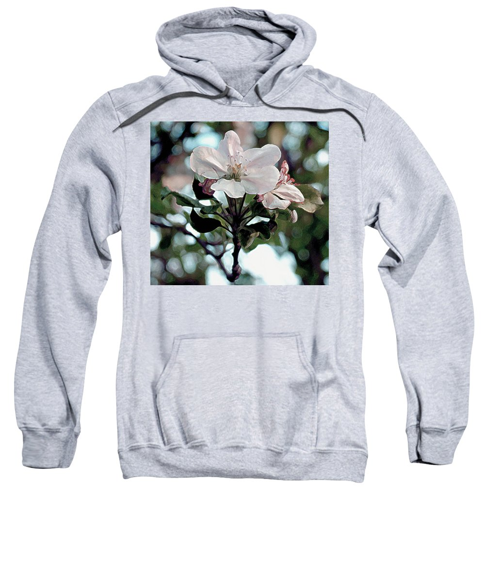 Flowers Sweatshirt featuring the painting Apple Blossom Time by RC deWinter