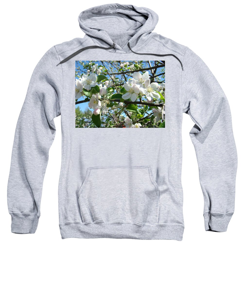 �blossoms Artwork� Sweatshirt featuring the photograph Apple Blossoms Art Prints 60 Spring Apple Tree Blossoms Blue Sky Landscape by Baslee Troutman