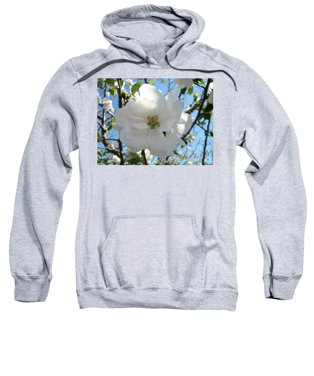 Apple Sweatshirt featuring the photograph Apple Blossoms Art Prints Canvas Spring Tree Blossom Baslee Troutman by Baslee Troutman