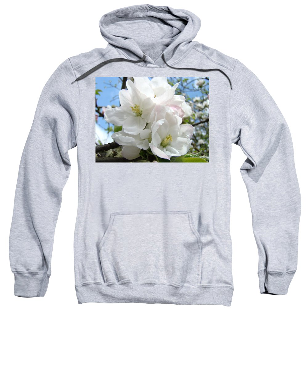 �blossoms Artwork� Sweatshirt featuring the photograph Apple Blossoms Art Prints Giclee 48 Spring Apple Tree Blossoms Blue Sky Macro Flowers by Baslee Troutman