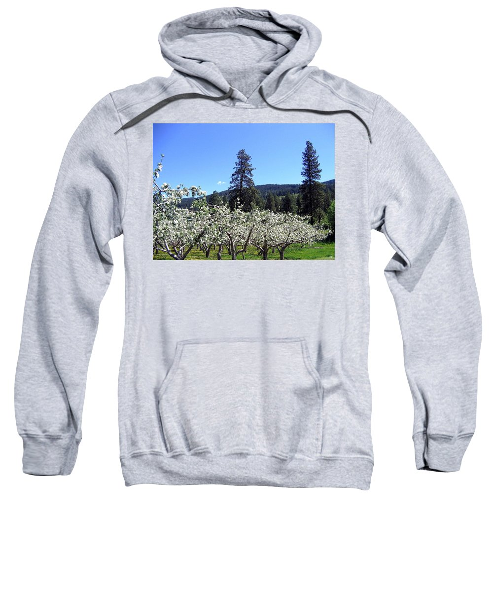 Orchard Sweatshirt featuring the photograph Apple Orchard In Bloom by Will Borden