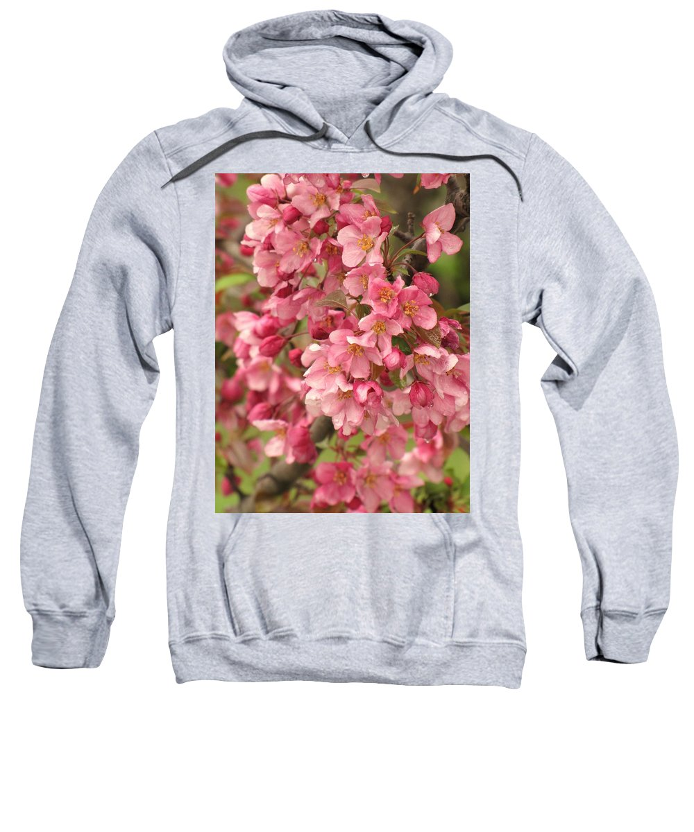 Blossoms Sweatshirt featuring the photograph April Rain by Lori Frisch