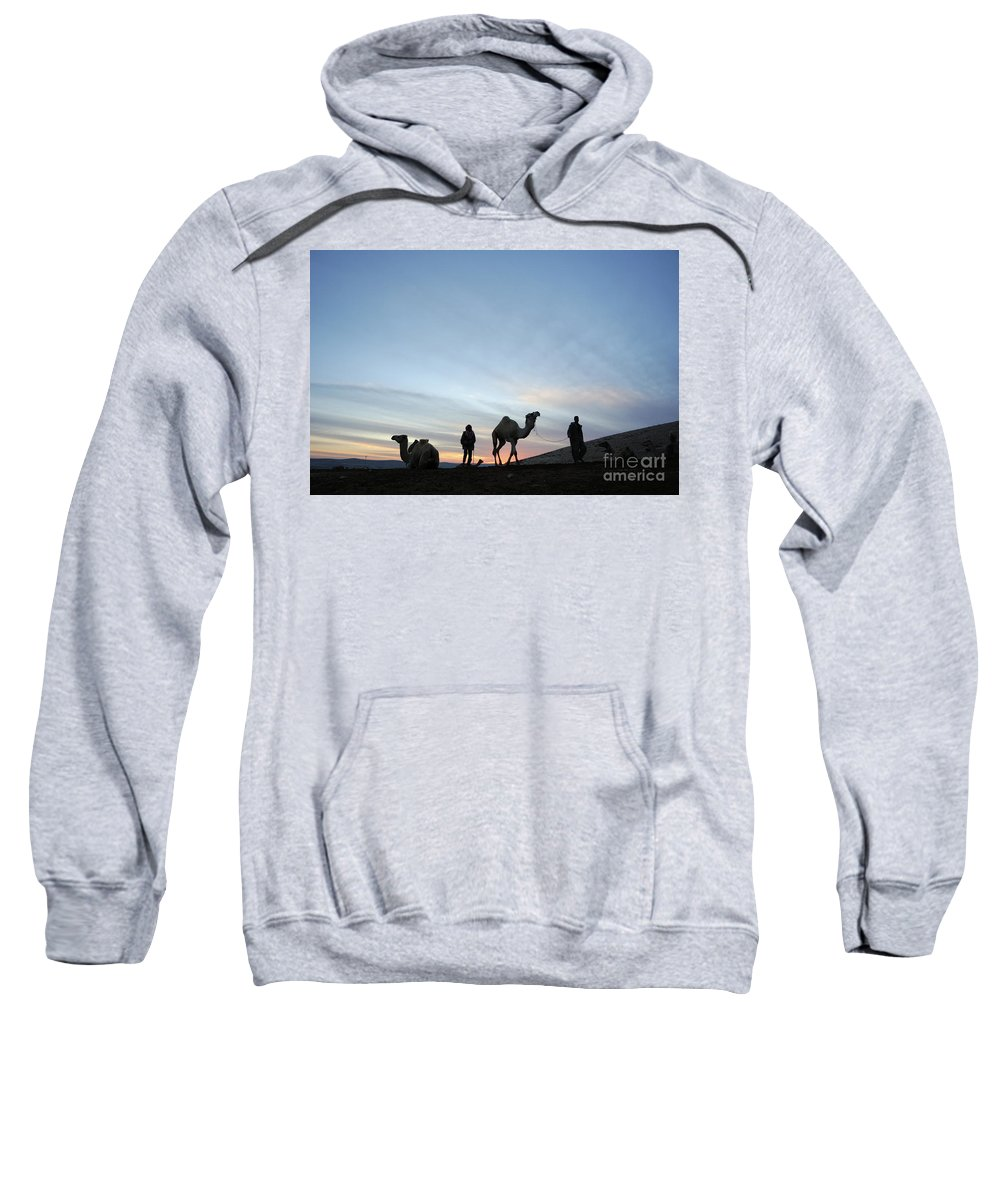 Middle East Sweatshirt featuring the photograph Arabian Camel At Sunset by PhotoStock-Israel